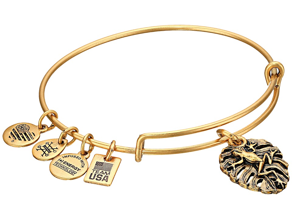 Alex and Ani - TEAM USA Frog Bangle (Gold) Bracelet