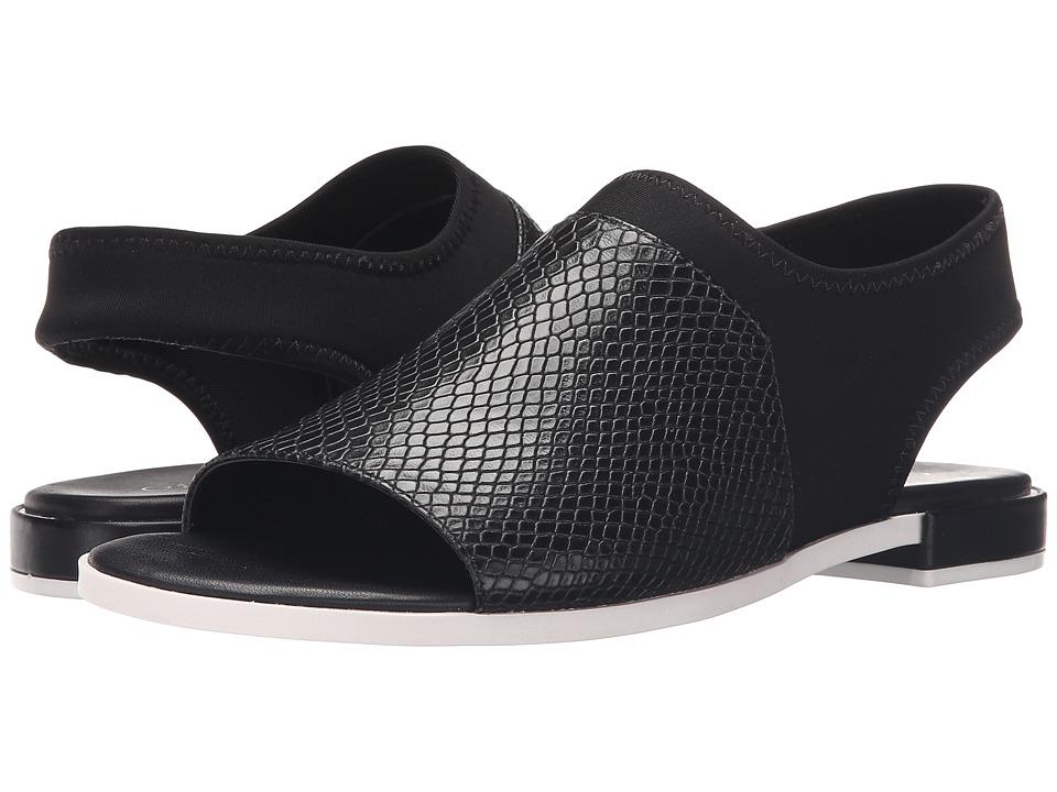 Calvin Klein - Adina (Black Leather/Neoprene) Women