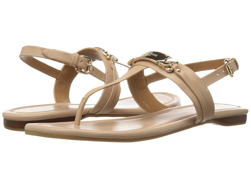 COACH - Caterine (Flint) Women's Shoes