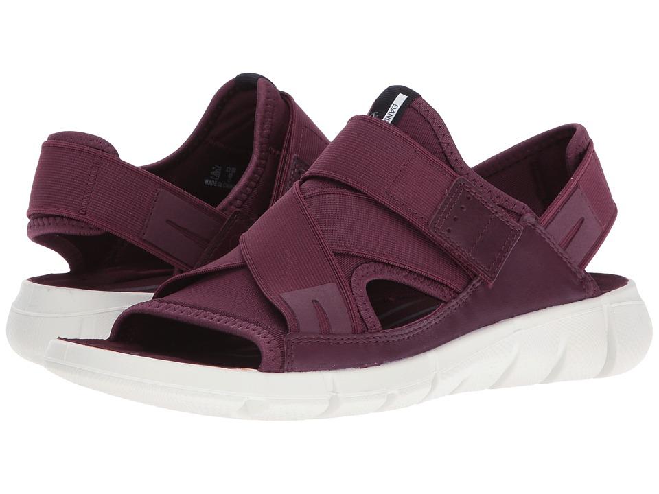 ECCO Sport - Intrinsic Sandal (Bordeaux/Bordeaux) Women's Sandals