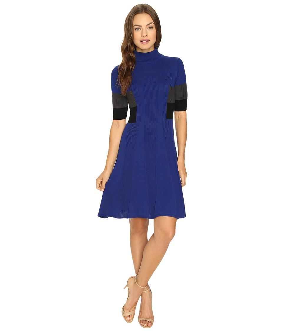 Adrianna Papell - Mock Neck Color Block Flare Sweater Dress (Night Fever/Multi) Women's Dress