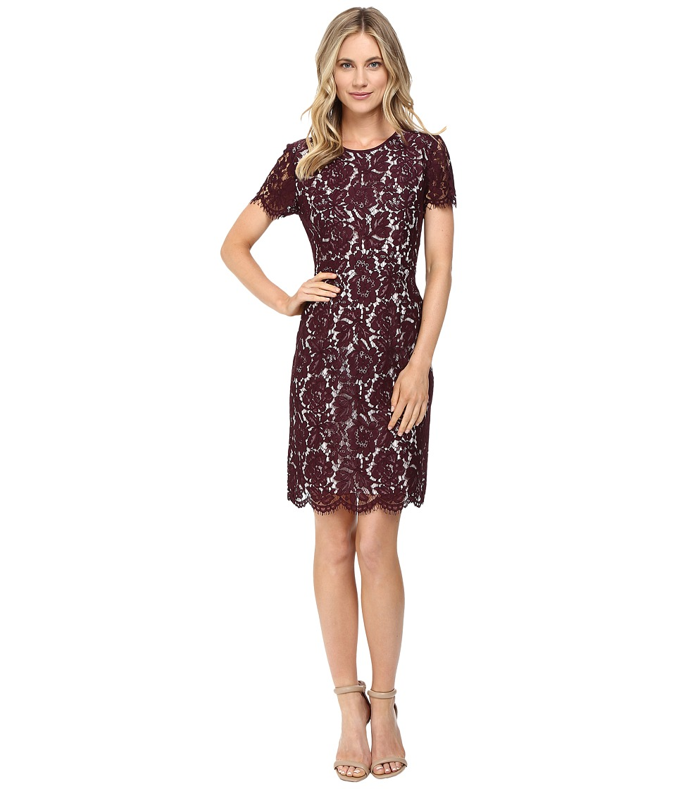 Vince Camuto - Short Sleeve Scallop Lace Dress (Raisin) Women's Dress