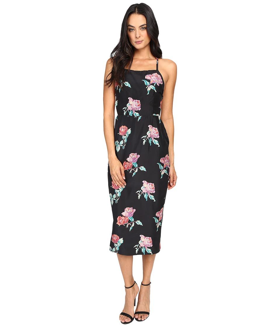 Stone Cold Fox Camellia Dress (Black Peony Print) Women