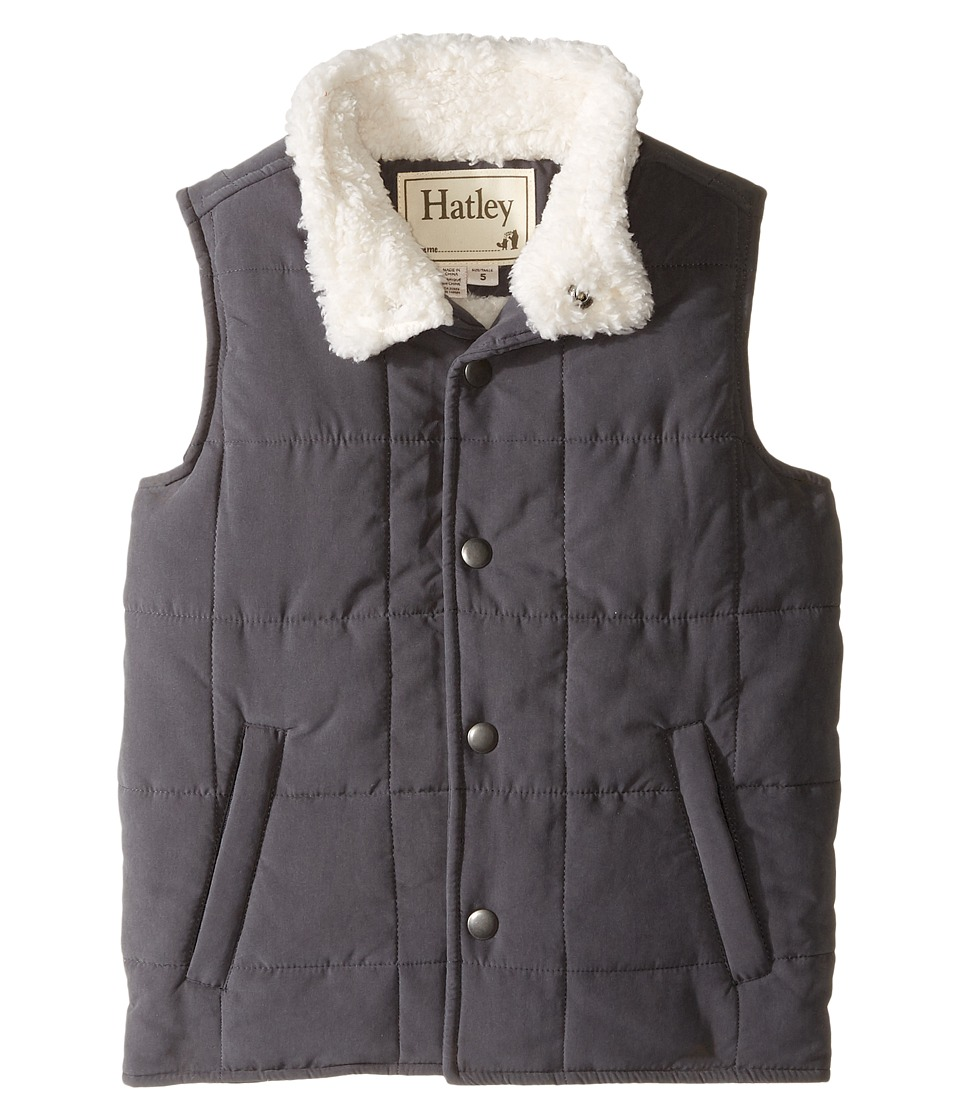 Hatley Kids - Swiss Wilderness Microfiber Sherpa Lined Vest (Toddler/Little Kids/Big Kids) (Brown) Boy's Vest