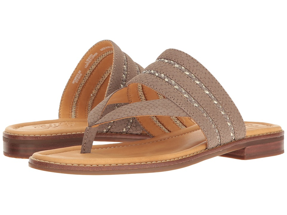Sperry - Gold Cup Flat Abbey Anne (Greige) Women's Sandals