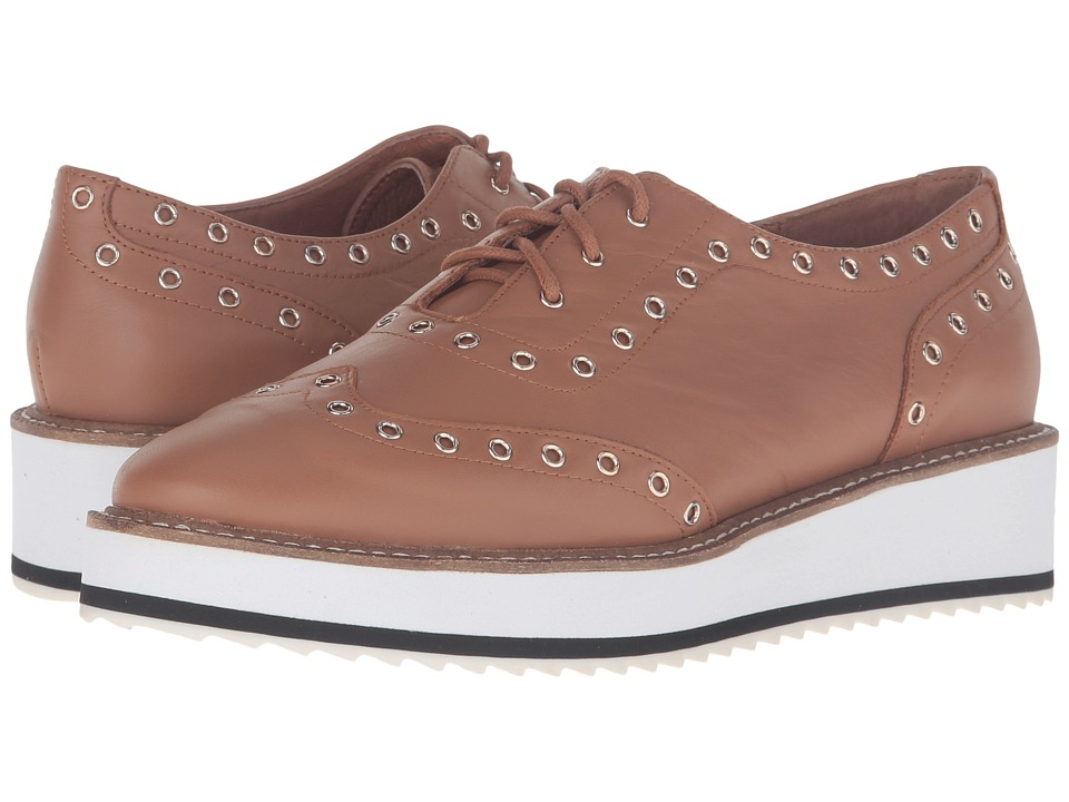 Shellys London - Winchester (Tan) Women's Lace up casual Shoes