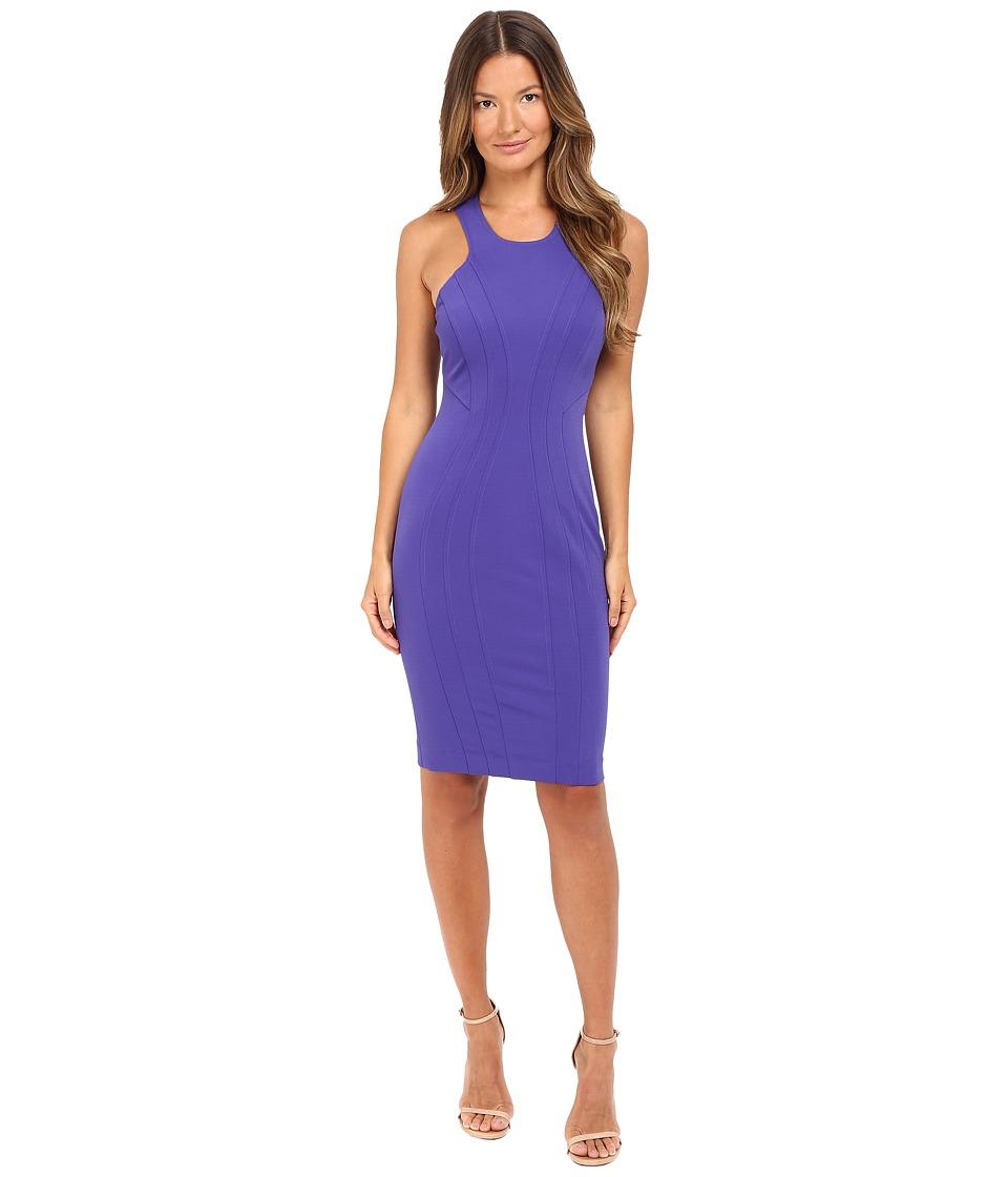 ZAC Zac Posen - Jasmine Dress (Nightshade) Women's Dress