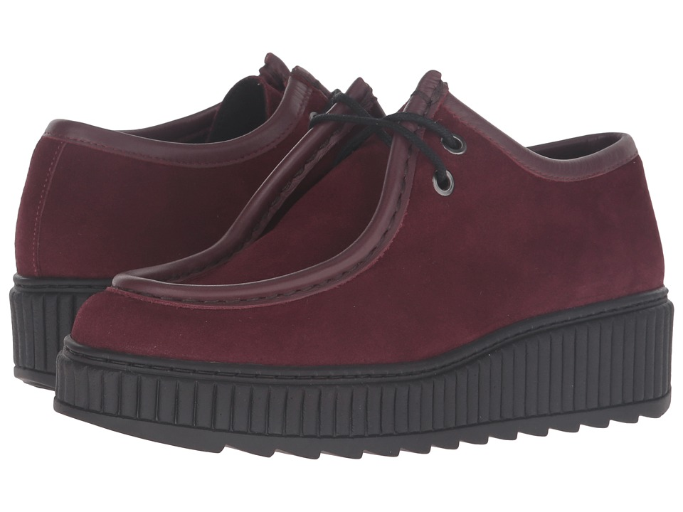 Shellys London - Kyra (Burgundy) Women's Lace up casual Shoes