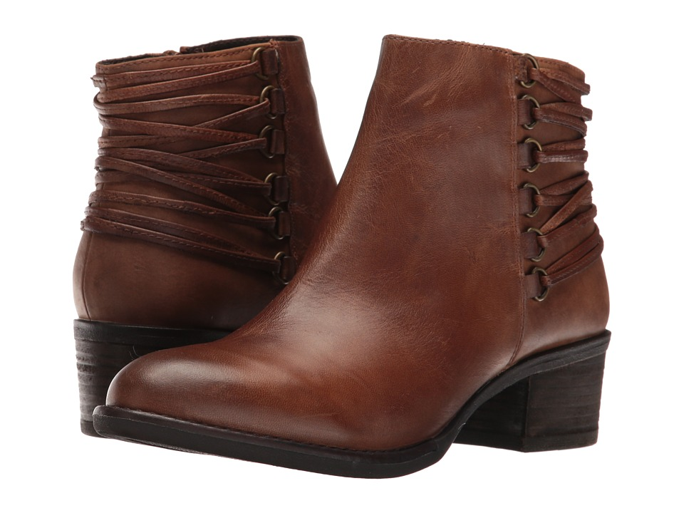 Steve Madden Caldor (Cognac Leather) Women