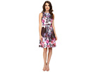 Placed Print Fit Flare Scuba Dress