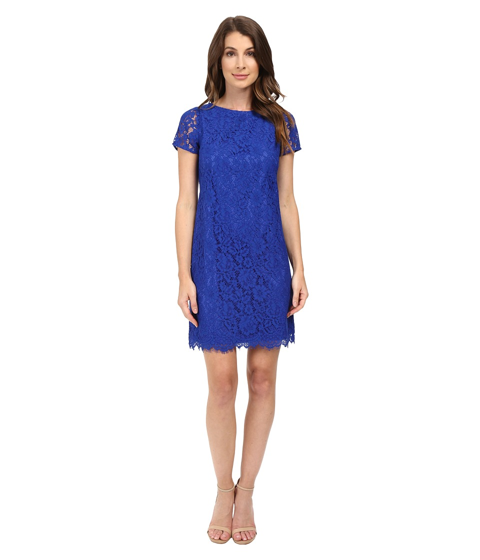 Adrianna Papell - Katie Lace Shift Dress (Yves Blue) Women's Dress