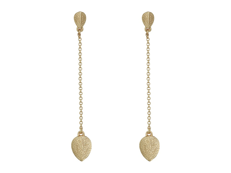 Cole Haan - Linear Chain Earrings Jacket (Gold) Earring