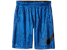 Dry Aop Fly Shorts (Little KidsXXXXX