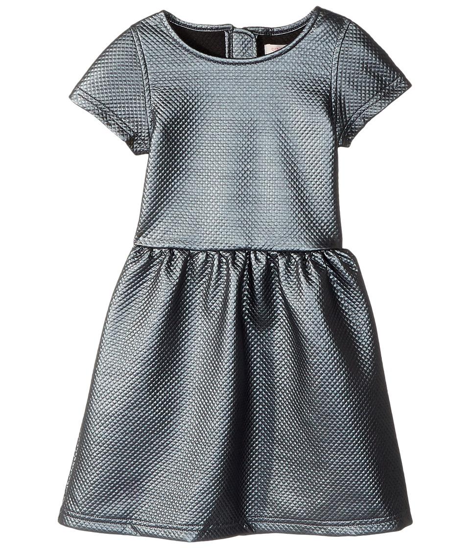 Appaman Kids - Kelsey Dress (Toddler/Little Kids/Big Kids) (Gunmetal) Girl's Dress