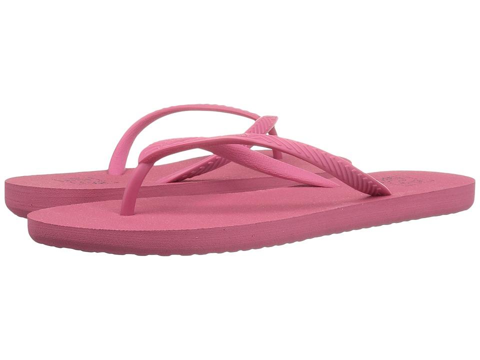 DC - Spray (Desert) Women's Sandals