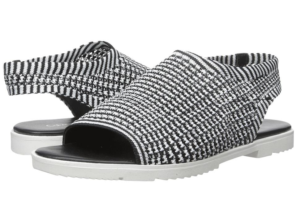 Calvin Klein - Mala (Black/White Stretch Knit) Women