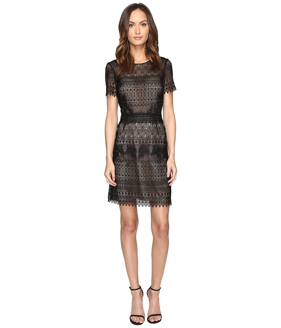 Marchesa Notte Giupre Lace Dress (Black) Women