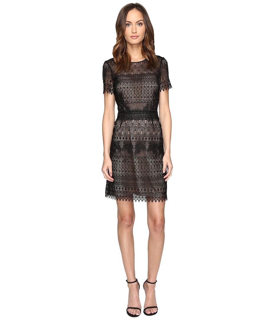 Marchesa Notte - Giupre Lace Dress (Black) Women's Dress