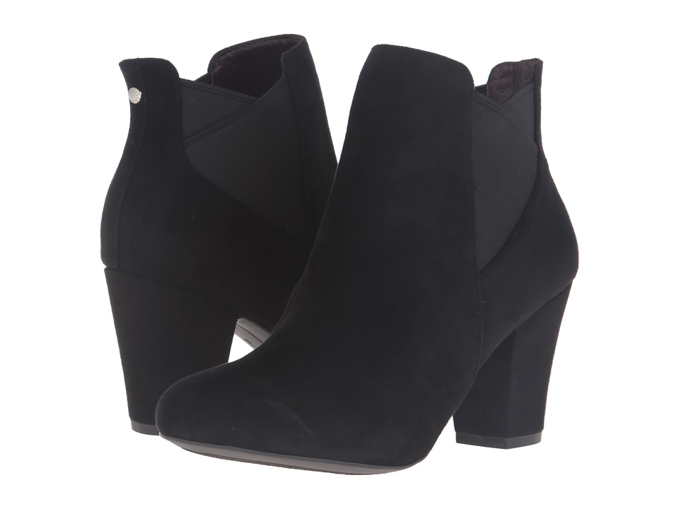 BCBGeneration - Dolan (Black Suede) Women's Shoes