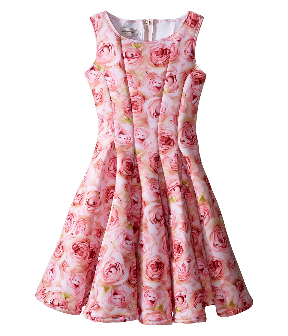 fiveloaves twofish - A Dozen Roses Fit N Flare Dress (Big Kids) (Pink) Girl's Dress