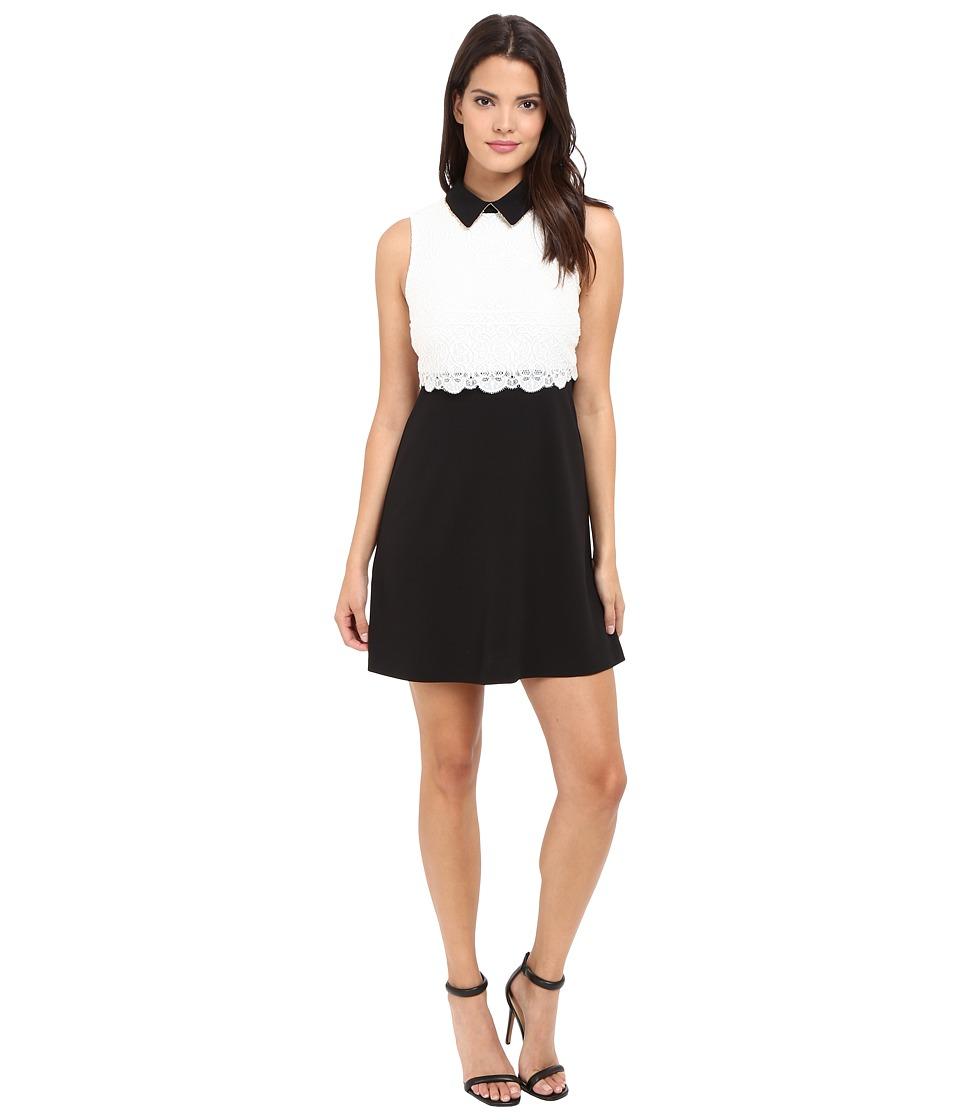 Jessica Simpson - Collard Lace Combo Dress (Black/White) Women's Dress