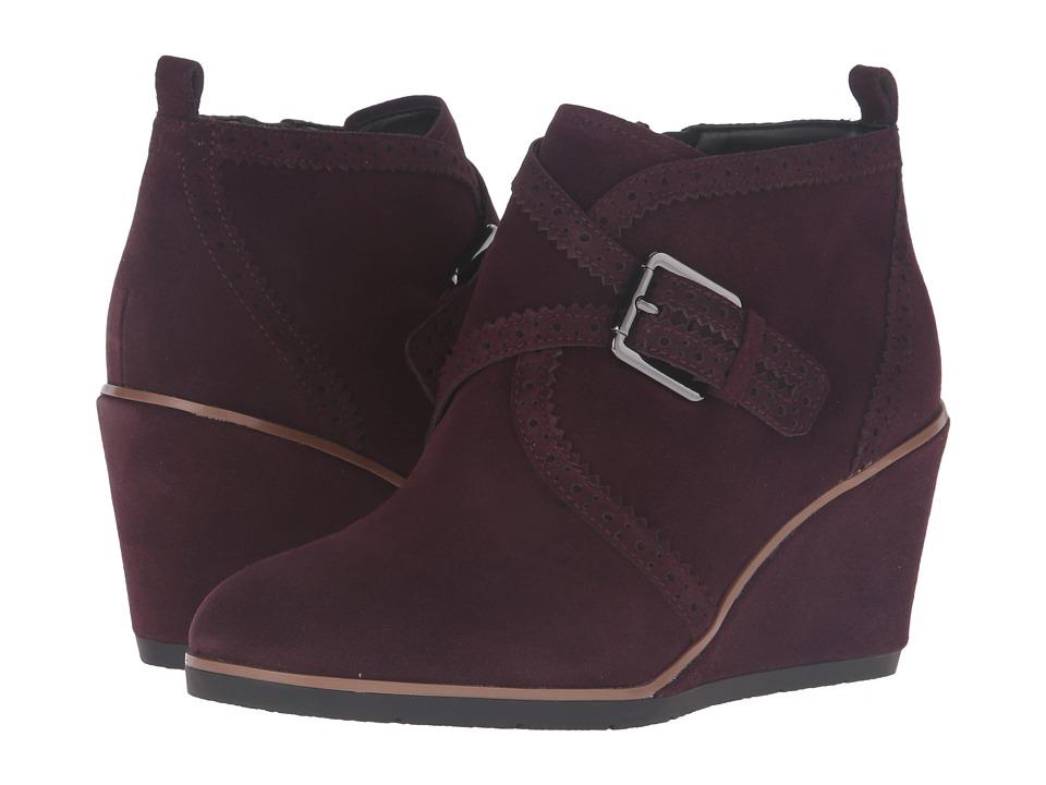 Franco Sarto - Arielle (Port Wine) Women's Shoes