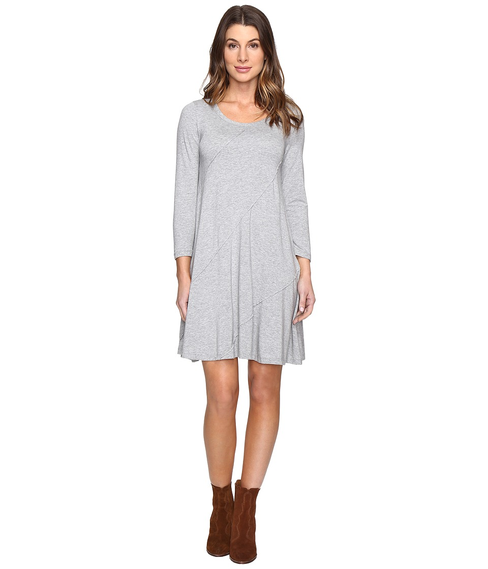 Mod-o-doc Cotton Modal Spandex Jersey Seamed Swing Dress (Smoke Heather) Women