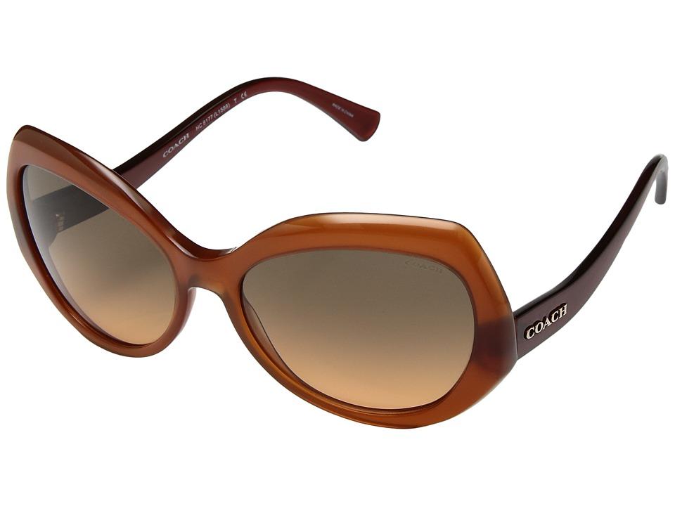 COACH - 0HC8177 (Amber/Dark Brown) Fashion Sunglasses