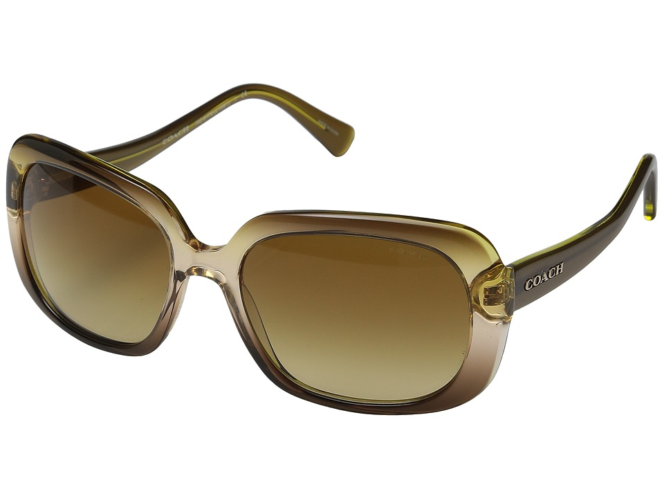 COACH - 0HC8178 (Olive Brown Gradient) Fashion Sunglasses