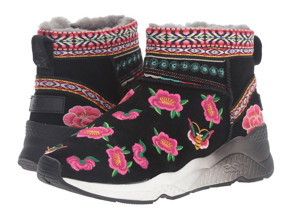 ASH - Muji (Black/Black/Black Kid Suede/Gross) Women's Shoes