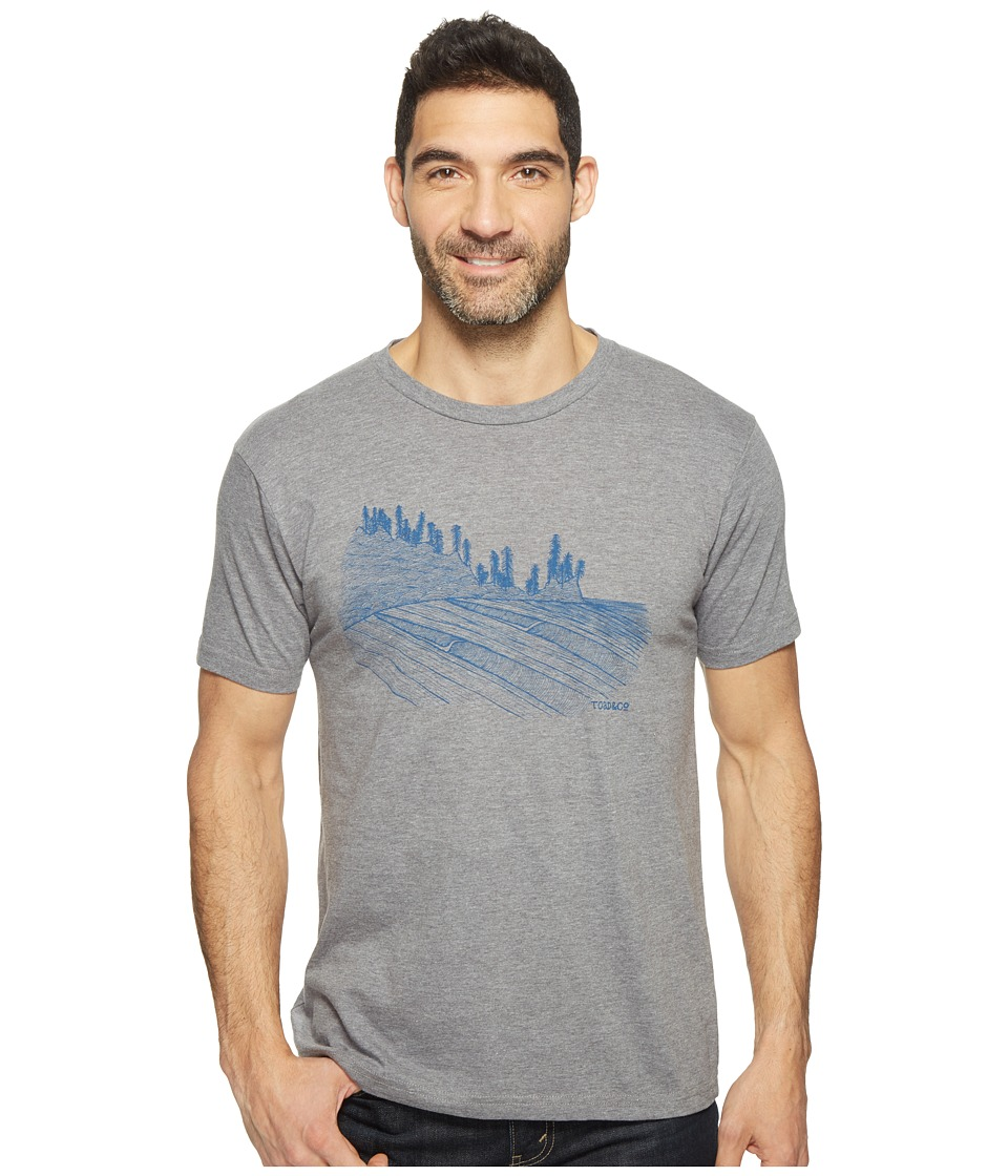 Toad&Co - Waves For Days Graphic Tee (Gray Heather) Men's T Shirt