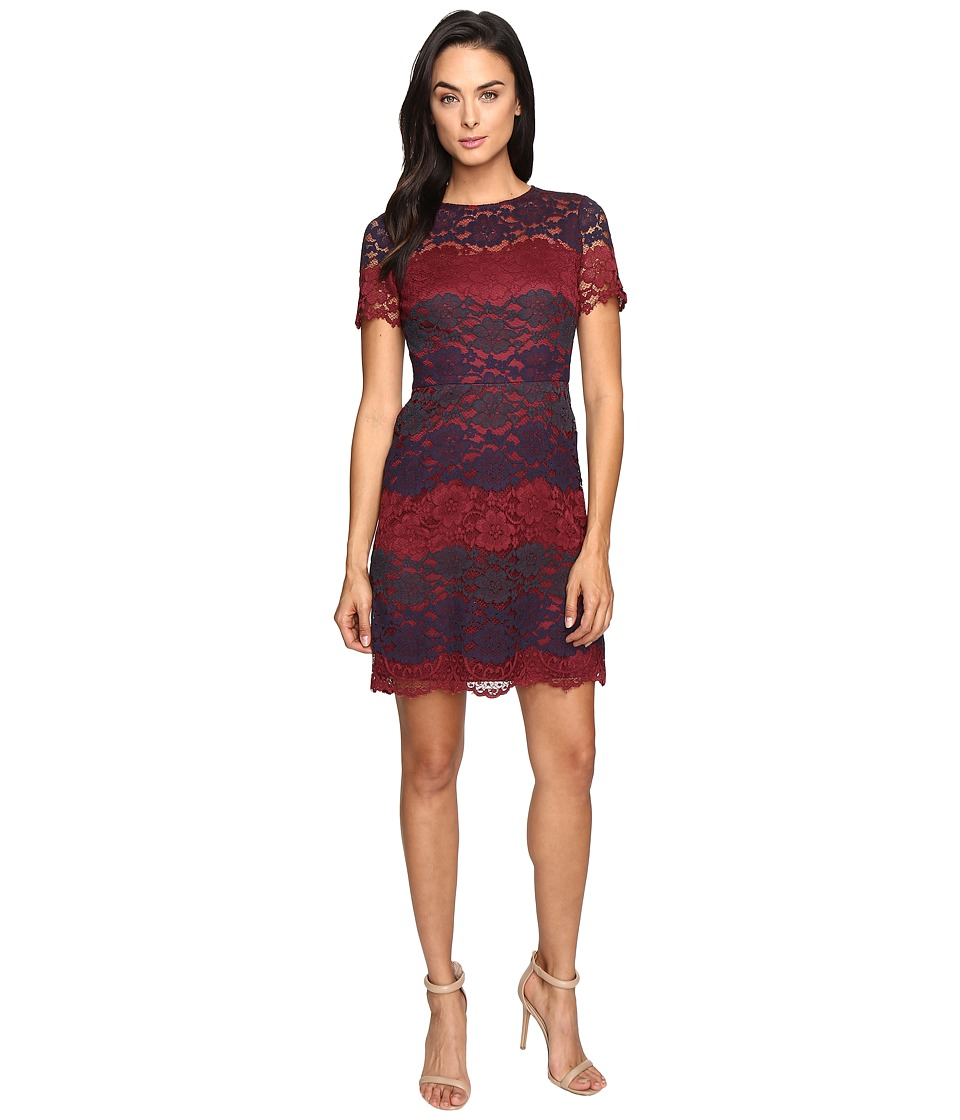 Maggy London - Tri-Color Lace Fit and Flare (Wine/Navy) Women's Dress