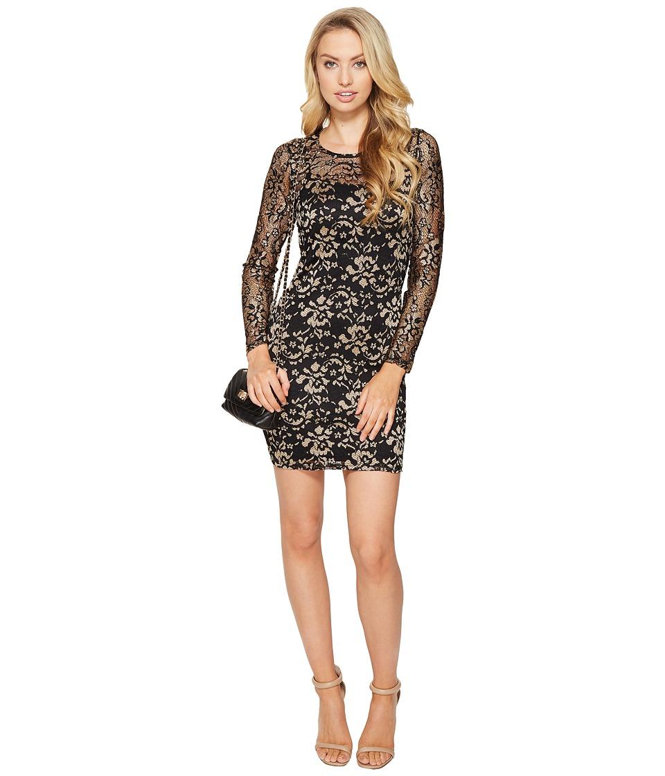ONLY Marlie Lace Dress (Black (Abricot Lace)) Women