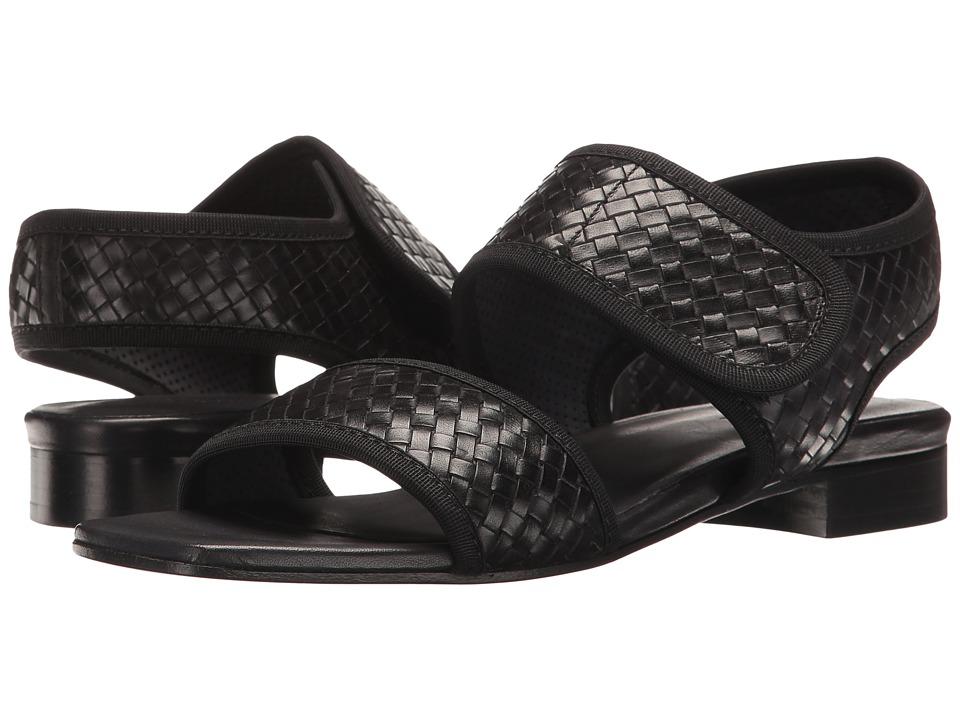 Sesto Meucci - Galt (Black Stained Calf) Women's Sandals
