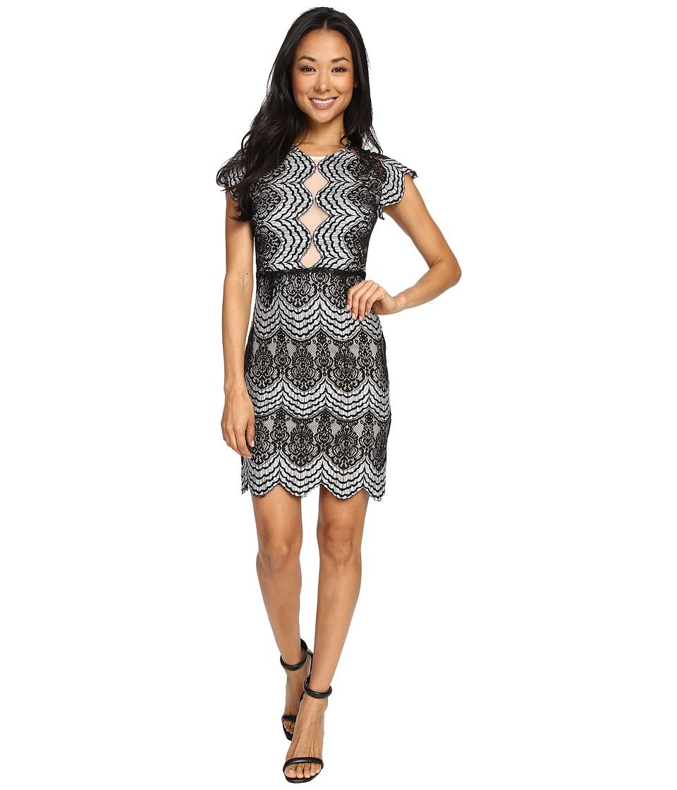 Brigitte Bailey Mica Short Sleeve Lace Dress (Black/Ivory) Women
