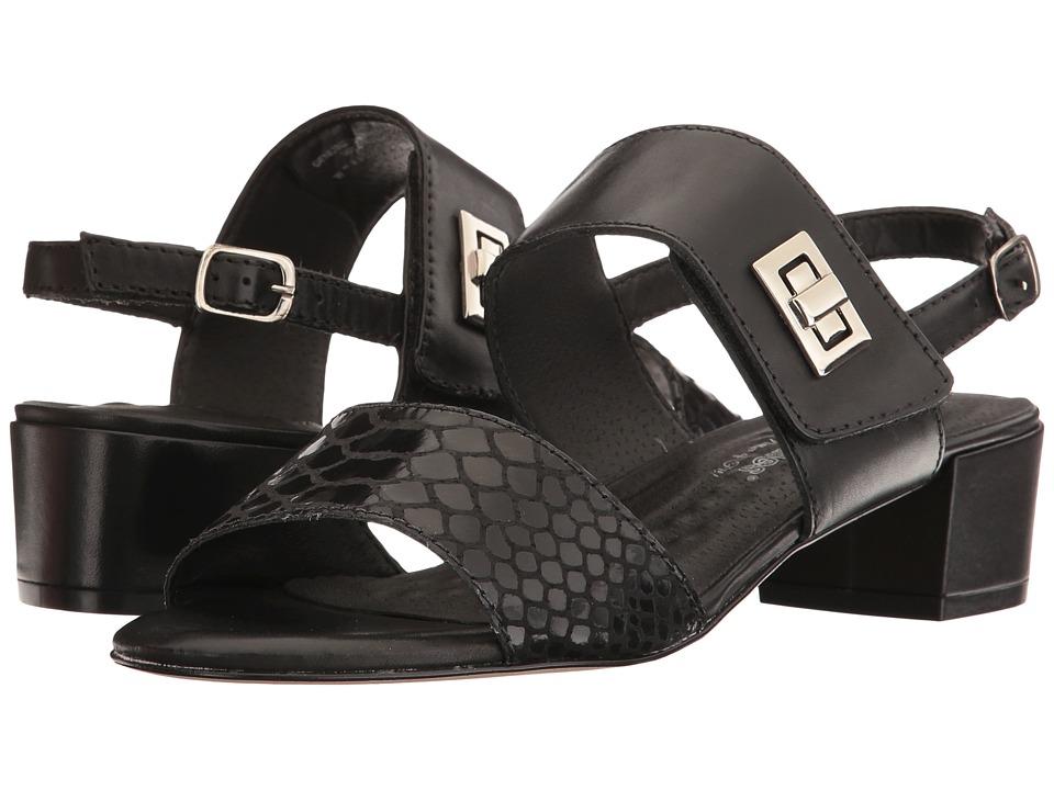 Walking Cradles - Milan (Black Leather/Black Cobra Print) Women's 1-2 inch heel Shoes