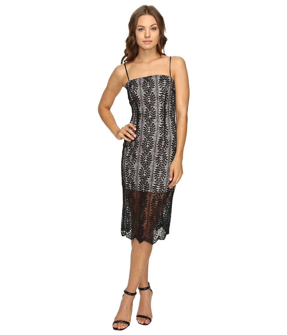 KEEPSAKE THE LABEL - Rhythm Lace Dress (Black) Women's Dress