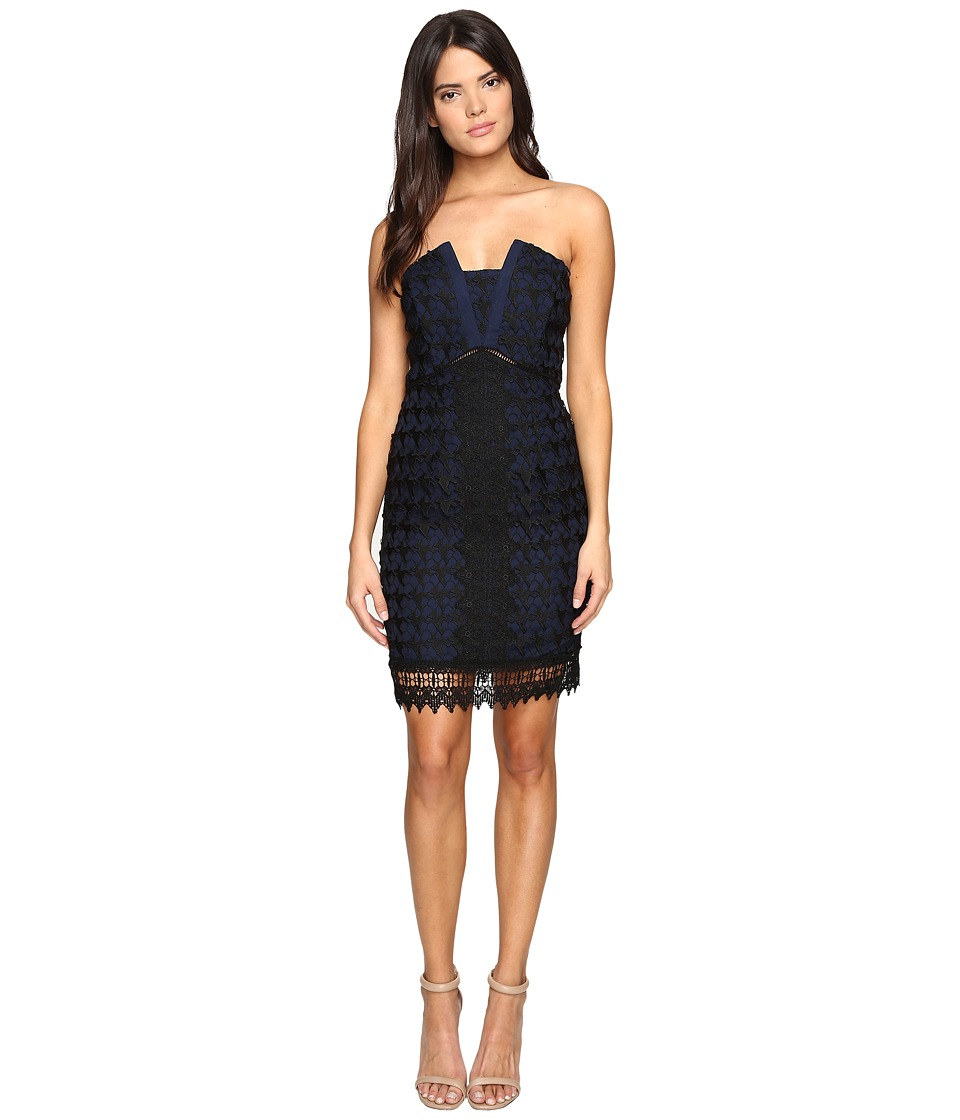 Adelyn Rae - Lace Tube (Black/Navy) Women's Dress