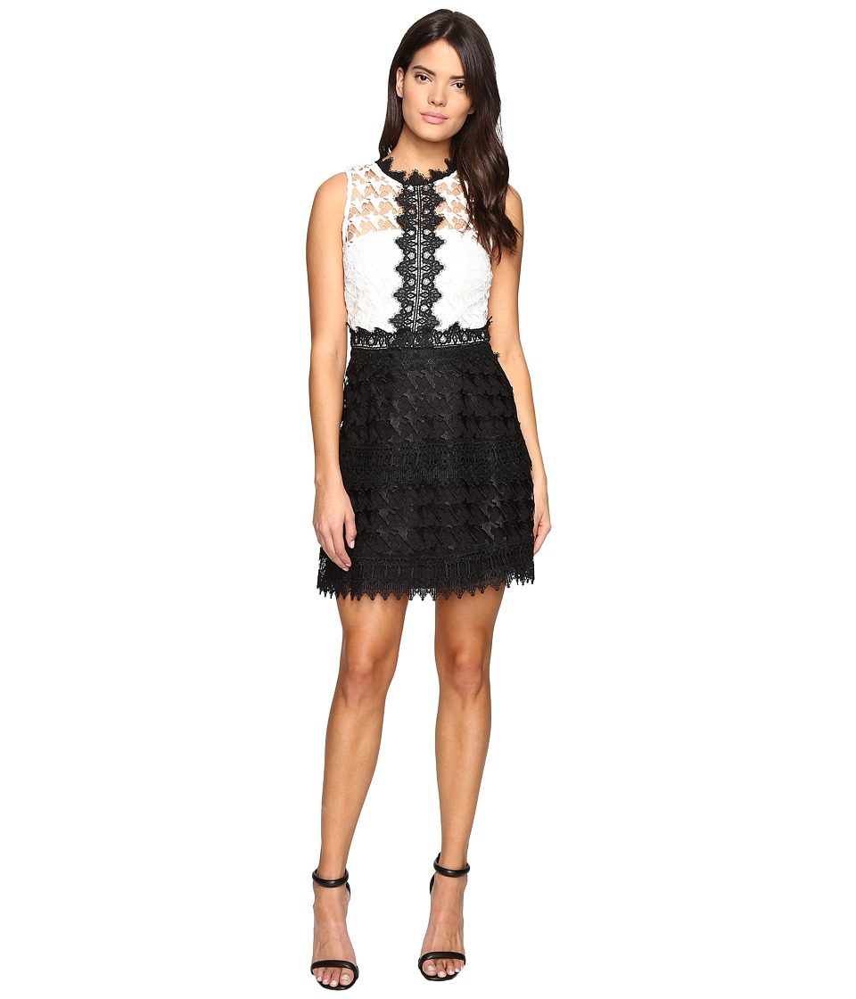 Adelyn Rae Lace Fit and Flare (White/Black) Women