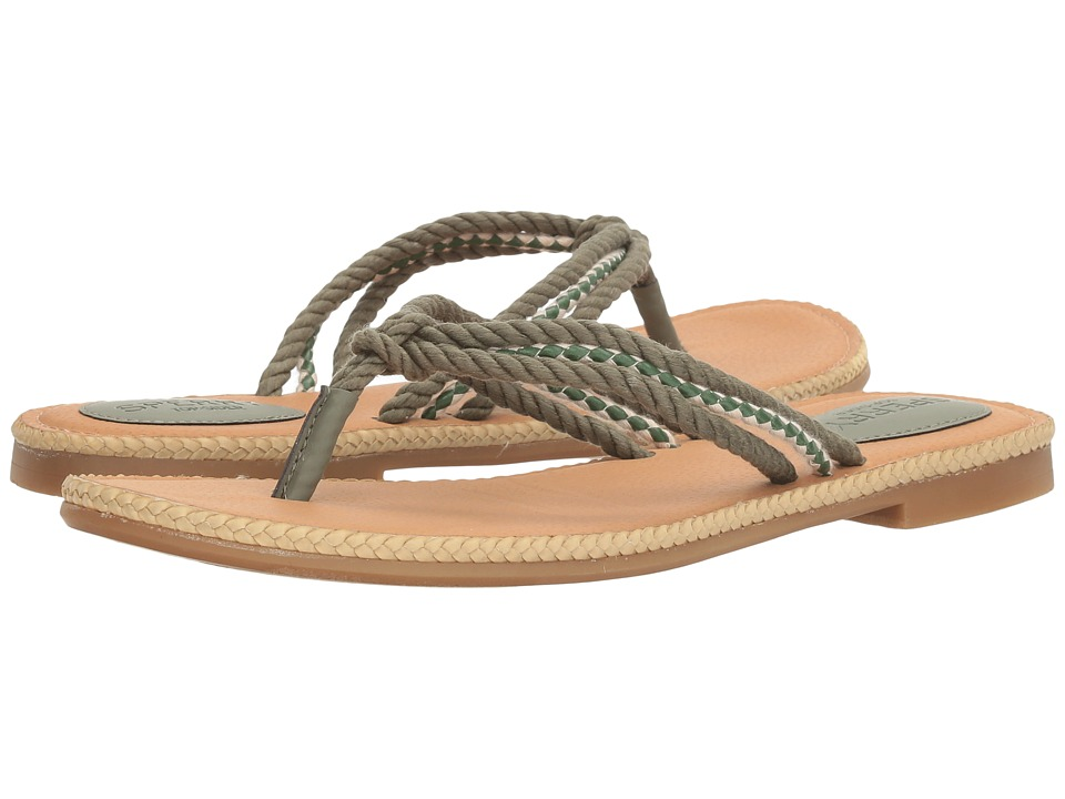 Sperry Anchor Coy Box (Olive) Women