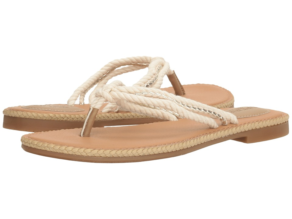 Sperry Anchor Coy Box (Natural/Gold) Women