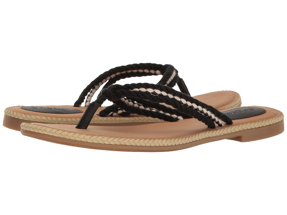 Sperry - Anchor Coy Box (Black) Women's Shoes