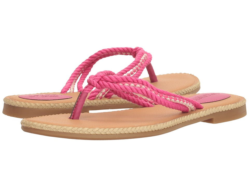 Sperry - Anchor Coy Box (Raspberry) Women's Shoes