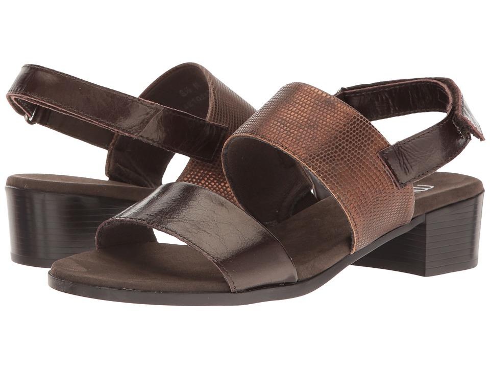 Munro - Kristal (Brown/Brown Lizard Trim) Women's Shoes