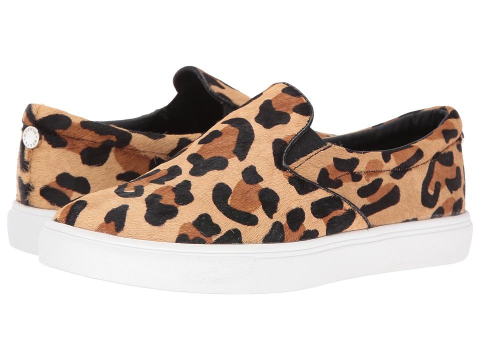 Steve Madden - Ecentrcl (Leopard) Women's Shoes