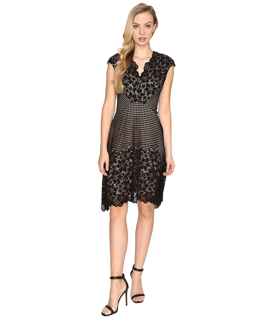 Maggy London - Grid Flower Border Lace Fit and Flare Dress (Black) Women's Dress