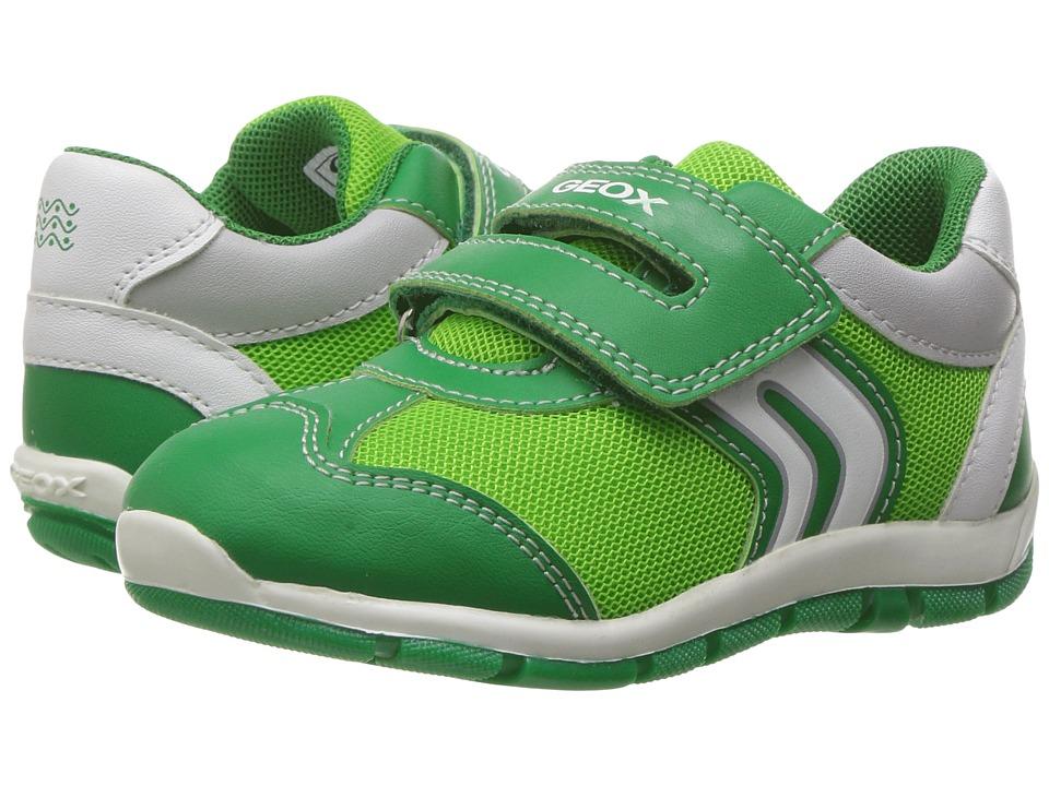 Geox Kids - Baby Shaax Boy 25 (Toddler) (Green) Boy's Shoes