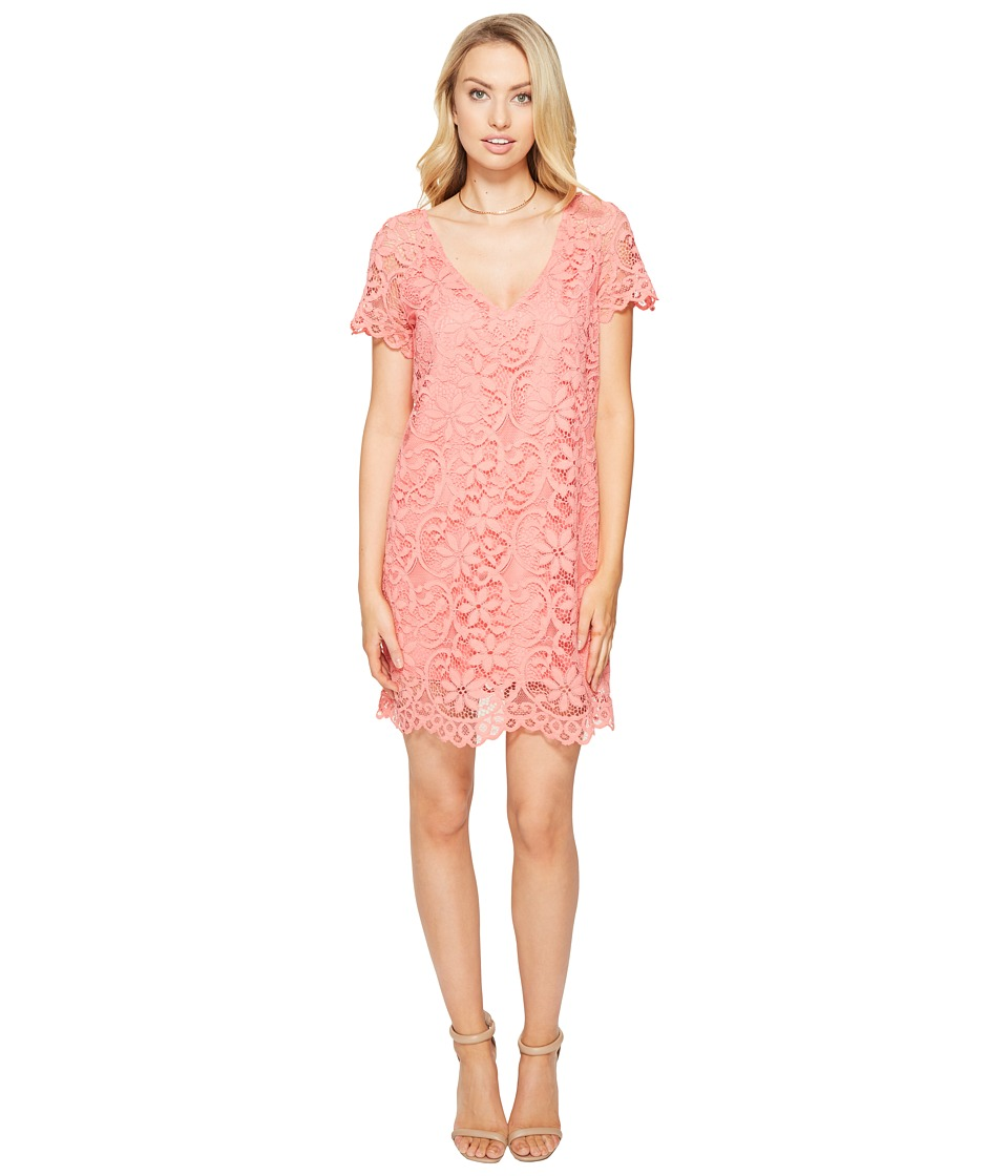 BB Dakota Rene V-Neck Lace Shift Dress (Cantaloupe) Women