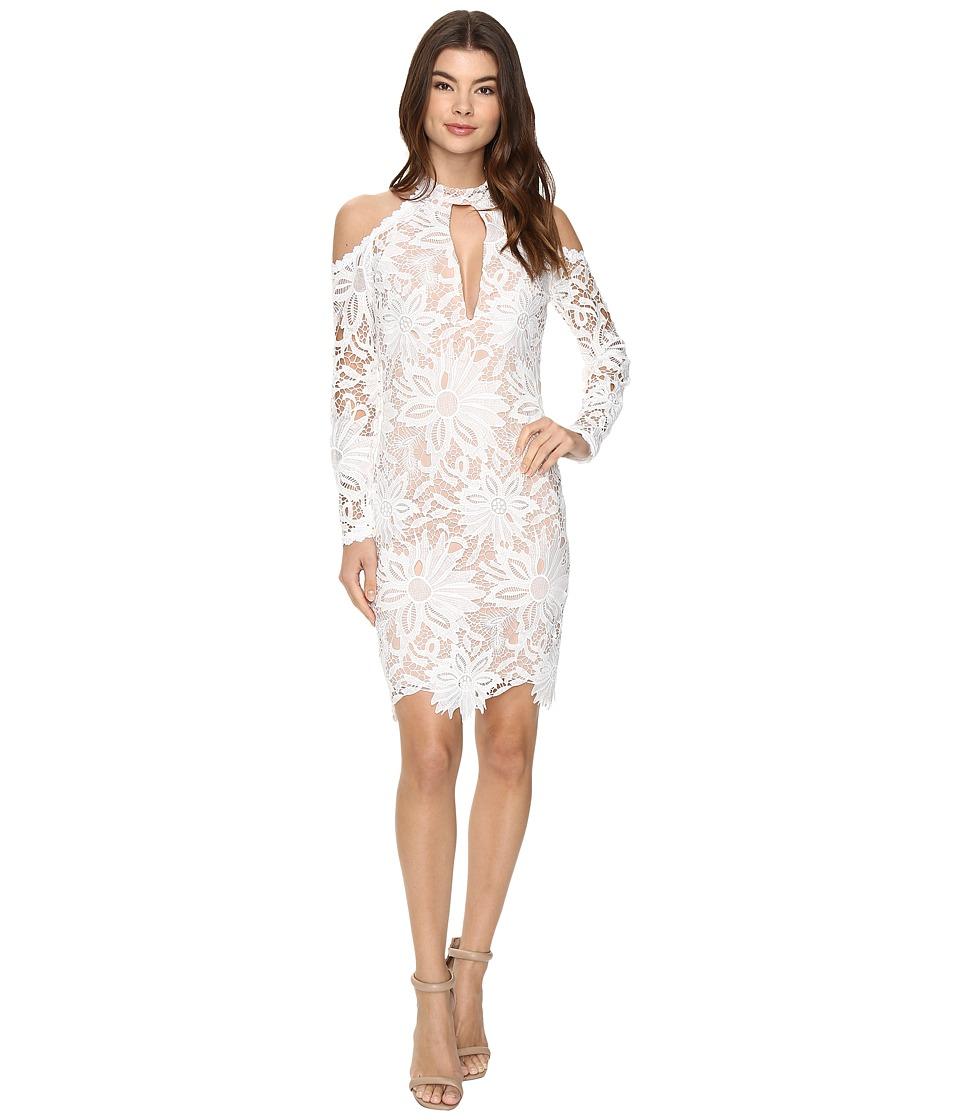 Nicole Miller - Sunflower Lace Kendall Dress (White/Blush) Women's Dress