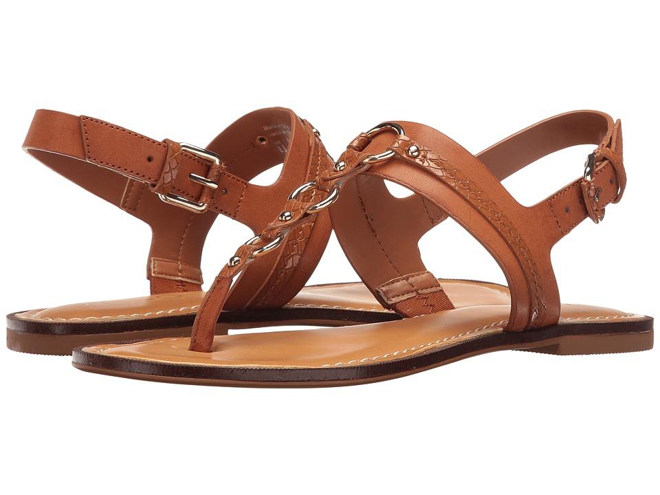 ALDO - Edden (Cognac) Women's Dress Sandals